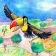toucan cover